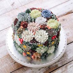 16 GORGEOUS LOOKING Cakes That Will Deeply Satisfy Anyone Obsessed With Succulents