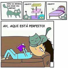 ASSIM MESMO!  #petmeupet  #gato  #amogato  #gatofofo  #gatofolgado  #cachorro  #boanoite