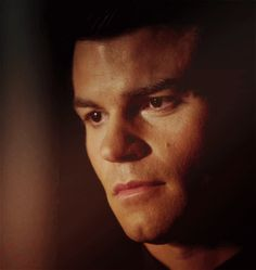 "Elijah Mikaelson ""I believe the term you're searching for is OMG"""