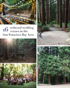 16 wedding venues with redwoods in the San Francisco Bay Area. My favorite venues!