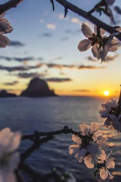 Almond sunset - Es Vedrà, Ibiza, Spain  (by Jose Antonio Hervas)