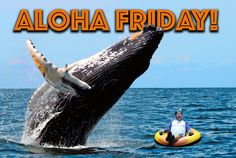 ALOHA FRIDAY FAM!! The weekend is here, brace yourselves!!! #alohafriday #kauaitubing #discoverkauai #tubekauai #hawaiivacation 😳❤🙌😎🐋💦🌊