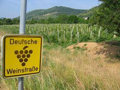 Pfalz - Eine Präsentation des Weinanbaugebiets (2013) Travel, Rhineland Palatinate, Corks, Round Round, Viajes, Destinations, Traveling, Trips