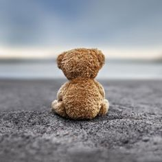"""Teddy Blue"" by Marko Mastosaari, check out more inspiring photos at 500px.com"
