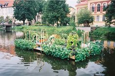 Text The team at Pocket Park Fyrisån/The Garden Edit, Photography Erik Wåhlström. Journal entry from October, 2014