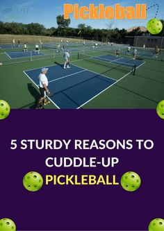 5 STURDY REASONS TO CUDDLE-UP PICKLEBALL  http://www.sportsurfaces.com/5-sturdy-reasons-to-cuddle-up-pickleball