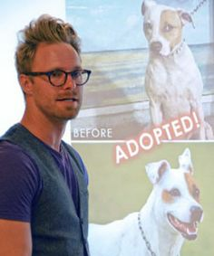 Lifesaving Dog Photos Top pet photographer Seth Casteel helps shelters take better pictures to get dogs adopted.