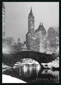 Central Park, New York #Kohls #home #decor
