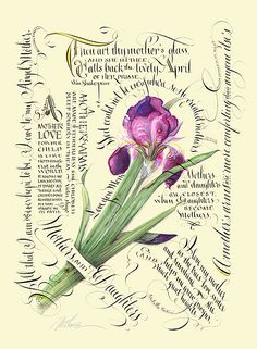 Victoria Magazine asked Maria Thomas to be their artist-in-residence for Victoria Magazine, Calligraphy Letters, Caligraphy, Nature Journal, Illuminated Letters, Vintage Diy, Print Magazine, Letter Art, Botanical Prints