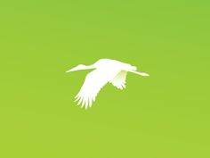 Dribbble - Stork by Micah Thompson