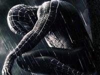 Image - Spiderman-3-wallpaper-venom-8.jpg | Villains Wiki | Fandom ...
