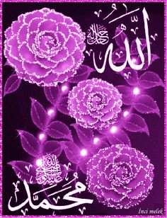 Islamic Images, Islamic Videos, Islamic Pictures, Love Wallpaper Download, Wallpaper Downloads, Allah Wallpaper, Islamic Wallpaper, Beautiful Rose Flowers, Beautiful Gif