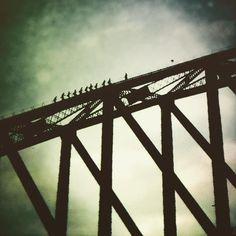 #sydneybridge #exploringaustralia #australianroadtripadventure #sydneysunset #sydneyharbourbridge by sostenehuguette http://ift.tt/1NRMbNv