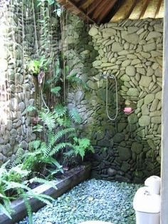 Plants, stone, and sunlight.  Shower me please.