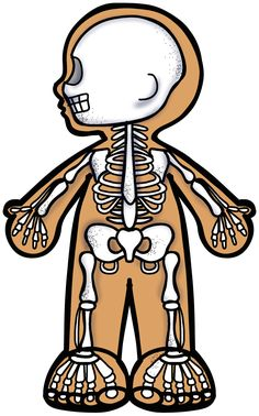 2 Clipart, Cute Clipart, Kindergarten Science, Preschool Activities, Free Coloring Pages, Coloring Books, All About Me Preschool, Human Body Systems, Family Illustration