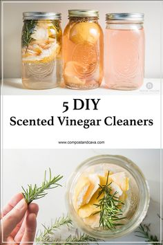 5 DIY Scented Vinegar Cleaners — Compost and Cava 5 DIY Scented Vinegar Cleaners — Compost and Cava,Sürdürülebilir yaşam 5 DIY Scented Vinegar Cleaners for the Natural and Zero Waste Home Related posts:Modern Endüstriyel.