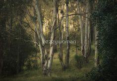 Treescape by ozzzywoman Plants, Plant, Planets