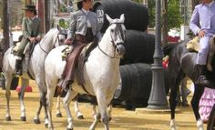 The Feria del Caballo - (Horse Fair) which is held annually in early May in Jerez. Best Travel Deals, Europe, White Horses, Andalucia, I Fall In Love, Beautiful Places, Folk, Good Things, Animals