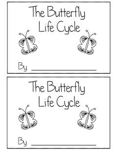 Butterfly Life Cycle Book Differentiated