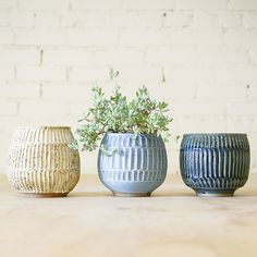 Keramik urtepotteskjulere i blå nuancer, gerne i større størrelser! (Vist: Carved Planter fra General Store, de er dog små).
