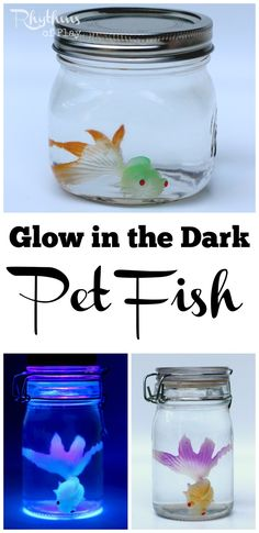 This DIY glow in the dark pet fish sensory bottle in its cute little ...