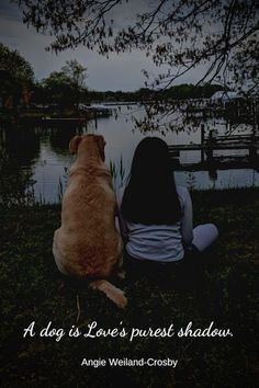 dog quote with a little girl and a yellow lab. A Girl And Her Dog Quotes, Cute Dog Quotes, Cute Animal Quotes, Funny Quotes, I Love Dogs, Puppy Love, Cute Dogs, Me And My Dog, Beautiful Love Quotes