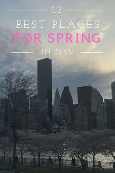 Right now is the perfect time to see cherry blossoms in NYC, as well as other beautiful spring blooms. Click through to find out the best places to see cherry blossoms in New York City - some obvious spots and others more off the beaten path. | The Travel Women #NYC #SpringNYC #cherryblossoms #NewYorkCity #NYCGuide
