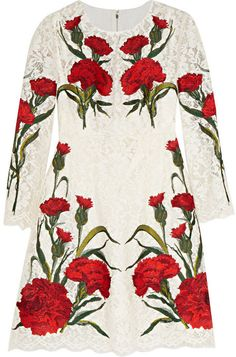 Dolce & Gabbana Embroidered lace mini dress