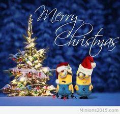 Merry Christmas to minions and to minions a goodnight. Merry Christmas Minions, Merry Christmas Pictures, Merry Christmas Quotes, Christmas Hanukkah, Happy Hanukkah, Very Merry Christmas, Christmas Greetings, Christmas Humor, Christmas 2017