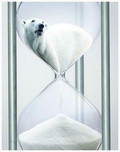 지구 온난화 공익 광고, 북극곰