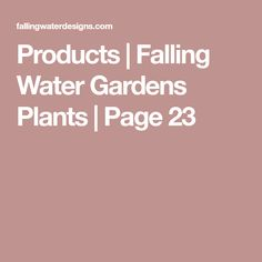 Products – Page 23 – Falling Water Gardens Plants