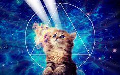 rainbow kitty unicorn | kitty3