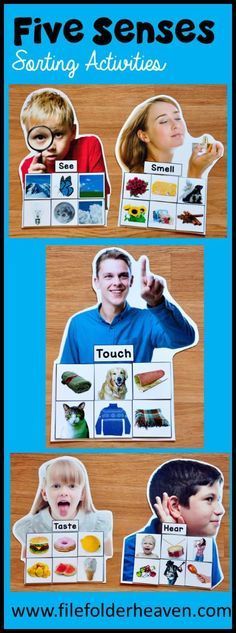 These Five Senses Sorting Mats (5 Senses) With Real Photos include 5 unique sorting mats that focus on identifying the 5 senses and how we use them. (Please see preview photos for details.) At an independent workstation, center or language group, students complete the following sorting and classification activities. Sorting See Sorting Hear Sorting Taste Sorting Touch Sorting Smell