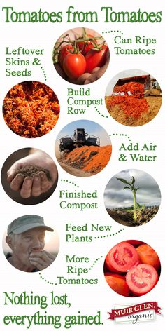 At Muir Glen Organic we compost our leftover skins & seeds to nourish the next generation of tomatoes.