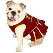 Florida State Seminoles Cheer Dress!  YES