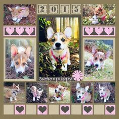 Brand New page featuring an adorable Corgi puppy! We used the Heart and number die sets to create embellishments for this page.