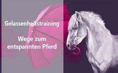 Mit Gelassenheitstraining zu einem entspannten, sicheren Pferd. Hier findest Du die verschiedenen Möglichkeiten, Dein Pferd an gruselige Dinge zu gewöhnen!