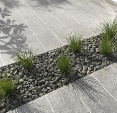 Mixed textures Pebble Landscaping, Landscaping With Rocks, Outdoor Landscaping, Front Yard Landscaping, Driveway Materials, Gray Rock, Pea Gravel, Crushed Stone, Sidewalk