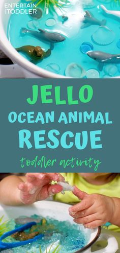 Jello Animal Rescue Activity Toddlers and Preschoolers Will Love!