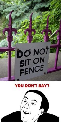 But pointy fences are comfy!