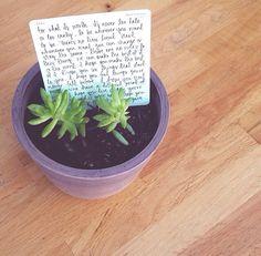Plant quote