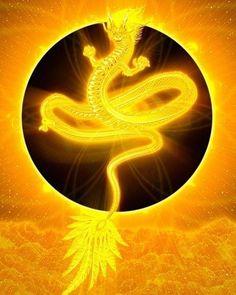 スマホのフォルダに入れるだけで効果抜群!金運アップ画像30選! Spiritual Warrior, Spiritual Symbols, Dragons, Dragon King, Dragon Artwork, Gold Money, Buy Birds, Dragon Pictures, Dragon Design