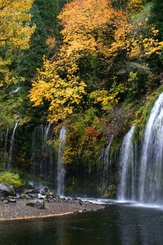 At 50ft high & 150ft wide this waterfall cascades over lush flora & moss, and is one of the most scenic waterfalls in CA.