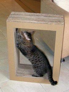 DIY cardboard cat scratcher