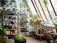 Garden Rack For Plants : Image of Shelving Diy Hanging Garden Shelves For A Small Space Diy Garden Rack For Plants. For,Garden,Plants,Rack Indoor Plant Shelves, Garden Shelves, Indoor Garden, Indoor Plants, Garden Rack, Ikea Portugal, Ikea Plants, Large Greenhouse, Decoration Ikea
