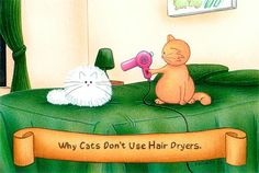 """Why Cats Don't Use Hair Dryers""  by Steven Leary"