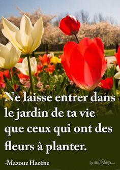 Ne laisse entrer dans le jardin de ta vie que ceux qui ont des fleurs à planter. -Mazouz Hacène. #citation #citationdujour #proverbe #quote #frenchquote #pensées #phrases #french #français