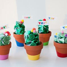 DIY: These are some bright, happy favors that would be simple and fun to make. I am saving this for a Cinco de Mayo party. Paint-Dipped Cactus Party Favors (Tutorial) - How to Tutorials Diy Fiesta Party Favors, Mexican Fiesta Party, Fiestas Party, Baby Shower Party Favors, Bridal Shower, Mexican Party Favors, Cowboy Party Favors, Fiesta Games, Party Ideas For Teen Girls