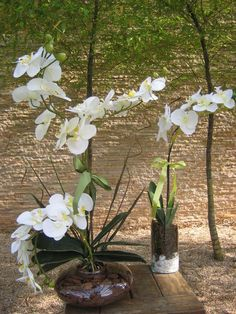 Lindo conjunto de orquideas brancas com miolo amarelo composto por:  - 1 vaso vidro oval ekebana com 3 orquídeas,cascalho,folhagens e rococo - medidas do vaso: 20 cma.larg. altura total com arranjo65 cm.  -1 vaso redondo com pedrinhas brancas e musgos com 1 orquidea branca e folhagens, e rococó medidas do vidro: 12x25 cm. altura total com arranjo 60cm.  Faço com orquídeas de diversas cores como por exemplo: vermelha,turquesa,branca com miolo pink,laranja,roxo,lilás,pink,rosa  Voce monta sua... Orchid Terrarium, Arte Floral, Flower Centerpieces, Orchids, Garland, Planters, Wreaths, Flowers, Crafts