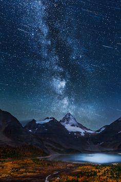 wearevanity:  Star Winds